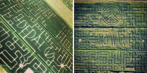 Comparazione 2016 e 2017 del percorso del labirinto Dedalo