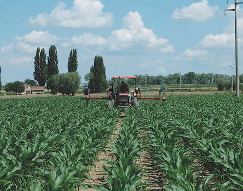 Netafim e dekalb insieme per incrementare le produzioni di for Irrigazione per aspersione