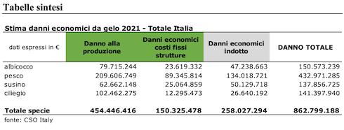 Stima dei danni economici alla frutta estiva causati dalle gelate 2021 - Fonte Cso Italy