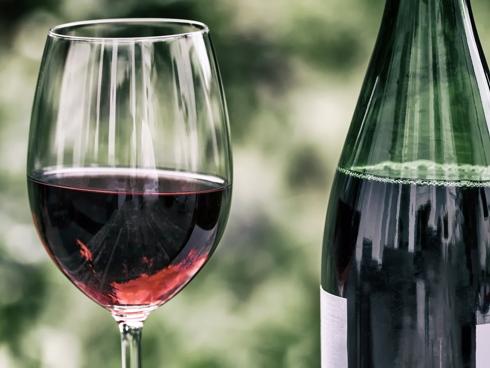 La viticoltura sostenibile per un vino sostenibile