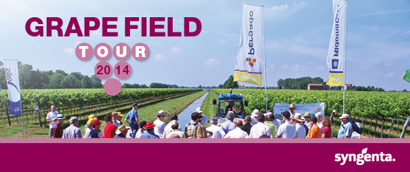 Grape Field Tour - Syngenta in campo 2014