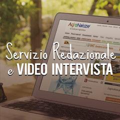 Servizio redazionale e video intervista